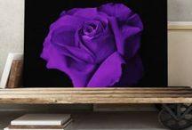 Ultra Violet: Trendfarbe 2018 / Dürfen wir vorstellen? Ultra Violet ist die Pantone Farbe des Jahres 2018. Jedes Jahr wartet die Welt des Designs gespannt auf die Color of the Year, die das Pantone Color Institute wählt. Ultra Violet, ein blaustichiges Violett, steht für den weiten Blick ins All und symbolisiert damit das Streben nach Wissen und Individualität.