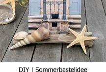 Treibholz DIY | Driftwood DIY