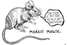 Modest Mouse / My favorite band of all time.  / by Morgan Sheppard