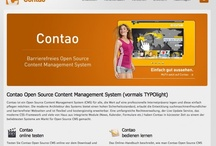 Content Management Artikel