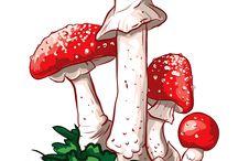 Искусство изображения грибов