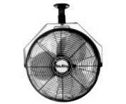 Oscillating Ceiling Fan