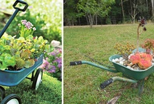 Gardening Ideas / The title says it all. / by The Owner-Builder Network