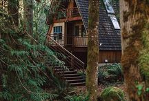 Cabin in the woods / lake