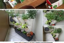Gardening, Raised beds, vegetable garden ideas / Gardening, Raised beds ideas, vegetable gardens, plants propelling...