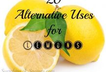 Useful Tips  / Great alternative uses for everyday items.