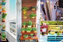 Jardinería / Jardinería