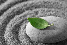 Meditation & Quotes