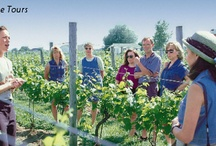 Wineries and Tours