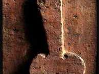 pompeí habitats