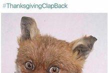 - ThanksGivingClapBack -