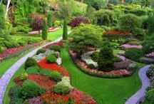 Flower Garden / Flower Garden. A flower garden is any garden where flowers are grown for decorative purposes. How to create attractive, long-blooming, easy-to-maintain annual and perennial flower gardens.