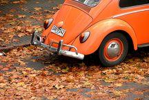 VW Board