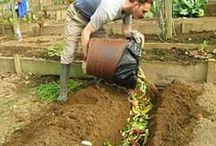 trinch composting