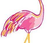 Flammy the Flamingo
