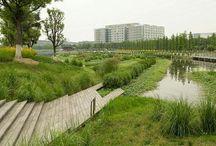 landscape - waterscapes