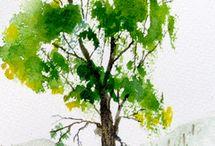 Akvarell - oktató