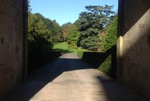 An Autumnal day at Eastnor Castle