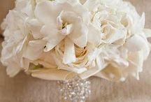Dream Wedding! / by Haleigh Fox