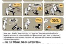 Cani,gatti e co. Istruzioni per l'uso.
