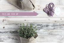 Huertos, botánica y herboterapia