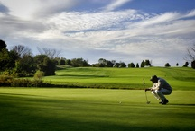 Golf in Pennsylvania / What makes Pennsylvania golfing different from everywhere else? Well, we have more varieties of terrain than you have clubs in your golf bag, with a Great Lake, mountains, limestone creeks and more rolling hills than you can swing a stick at.