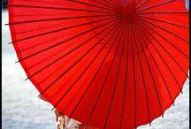 Color >> Red / by Bernadette Kay Post Nierman