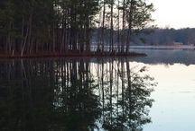 Lake Gaston Living