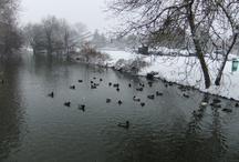 L'Indre sous la neige