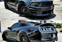 Mustangsssssss