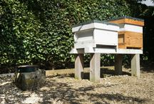 Our Honey Bees / We've started keeping bees on the grounds of The Devonshire Arms Hotel and Spa! You can enjoy their delicious honey on your toast at breakfast, try it in our restaurants' dishes, or even buy a pot yourself!