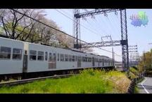 Train / 西武多摩川線