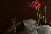 Arranjos florais - Ikebanas