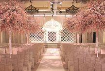 Weddings / by Stephanie Callejas