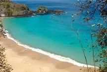 Shore beauty
