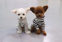 teddy bear shu