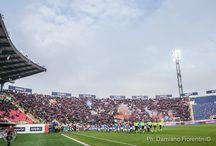 Bologna-Napoli 3-2 (Serie A 2015-2016)