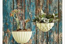 Plants, planters & gardening