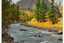 príroda horstvo