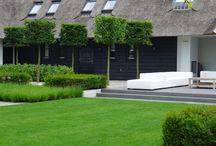 Villa tuin modern