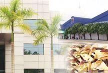 DXN Malajsia / A DXN központja Malajziában található, ahol organikus termékeket állítanak elő. Itt találod a részleteket: http://bea.ganodermakave.hu/dxn