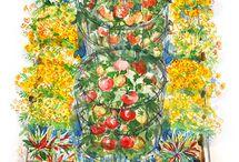 gardening / by Dodie Griffin