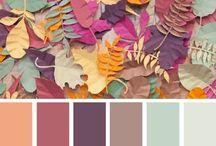 kleur skemas