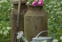 Cottage Garden Ideas / http://dabbiesgardenideas.com