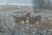 Wildlife art: Michael Sieve