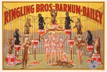 Let's all go to the circus!