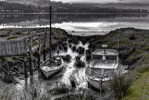 Tasmanian Landscapes / Landscapes