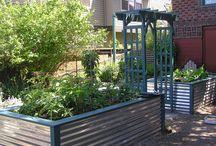 Yard, Gardens & Decks: ideas / Info: ideas, design, decor, etc. / by Mary Scheaffer