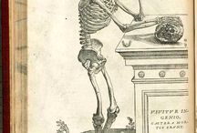 Andreas Vesalius - Anatomy 1543 / The anatomical studies of pioneering physician Andreas Vesalius, published 1543, are works of art as well of science.