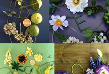 про лепку и цветы